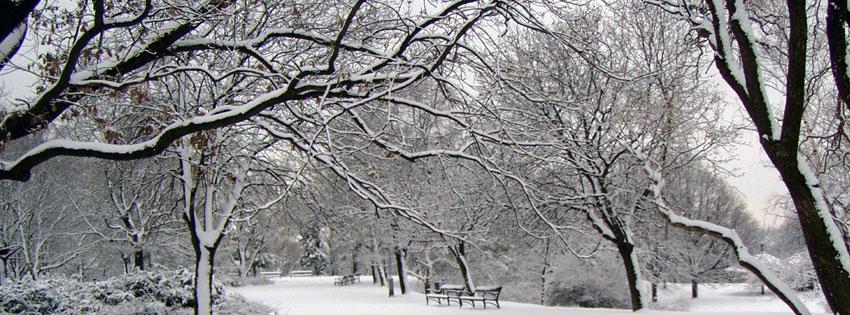 Facebook Borítóképek/Évszakok/Tél: Téli borítókép Facebook idővonalra havas parkkal és fákkal, valamint padokkal Budapesten, a Gellért-hegy tetején - ingyen - idézettel - borítóképek - háttérképek - facebook - karácsonyi - számítógépre - letöltése