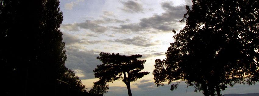 Facebook Borítóképek/Országok/Magyarország: Nyári Facebook borítókép fákkal alkonyatkor Balatonföldváron - borítóképek - háttérképek - számítógépre - karácsonyi - facebook - idézettel - letöltése - ingyen
