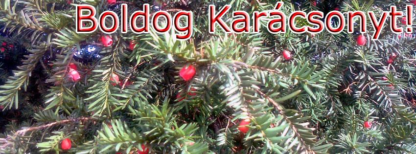 Facebook Borítóképek/Egyéb: Karácsonyi borítókép Facebook idővonalra, Boldog Karácsonyt felirattal - facebook - háttérképek - borítóképek - karácsonyi - letöltése - idézettel - ingyen - számítógépre