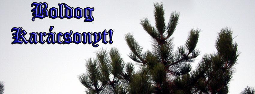 Facebook Borítóképek/Vallás/Karácsony: Karácsonyra való borítókép Facebook idővonalra, Boldog Karácsonyt felirattal - karácsonyi - idézettel - letöltése - borítóképek - facebook - ingyen - háttérképek - számítógépre
