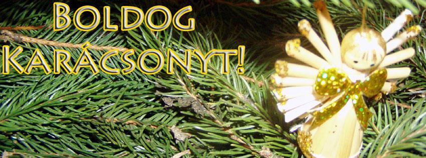 Facebook Borítóképek/Egyéb/Digitális: Angyalos Facebook karácsonyi borítókép, Boldog Karácsonyt szöveggel - háttérképek - karácsonyi - borítóképek - ingyen - számítógépre - idézettel - facebook - letöltése