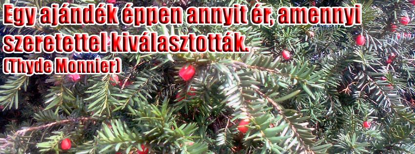 Facebook Borítóképek/Ünnepek: Karácsonyi borítókép Facebook idővonalra