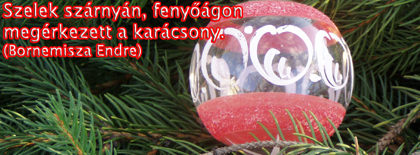 Facebook Borítóképek/Egyéb/Idézetes: Karácsonyi borítókép Facebook idővonalra