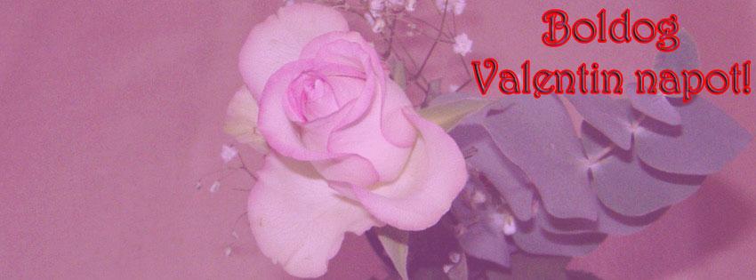 Facebook Borítóképek/Ünnepek/Valentin nap: Valentin napi virágos (rózsás) Facebook borítókép Boldog Valentin napot szöveggel - facebook - borítóképek - ingyen - letöltése - számítógépre - karácsonyi - idézettel - háttérképek